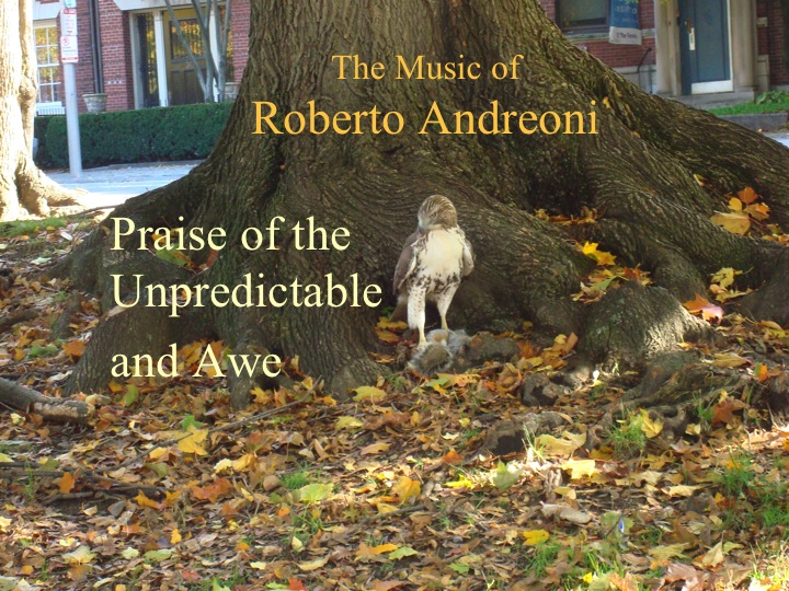 The music of Roberto Andreoni